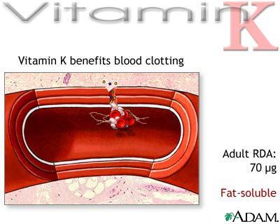 موسوعة الفيتامينات